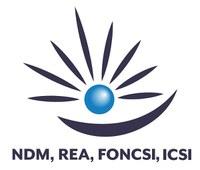 Une alliance REA, NDM, Foncsi et Icsi sur la résilience et la prise de décision
